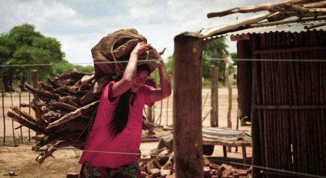 Mujeres Indígenas en Argentina: visibilidad, luchas y acciones colectivas