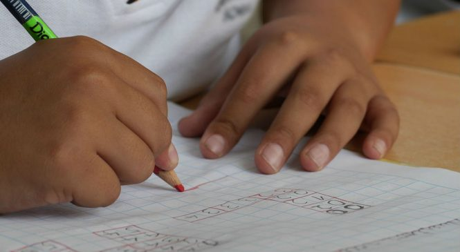 Colombia: Destituyen a profesora que insultó a estudiante indígena que terminó suicidándose