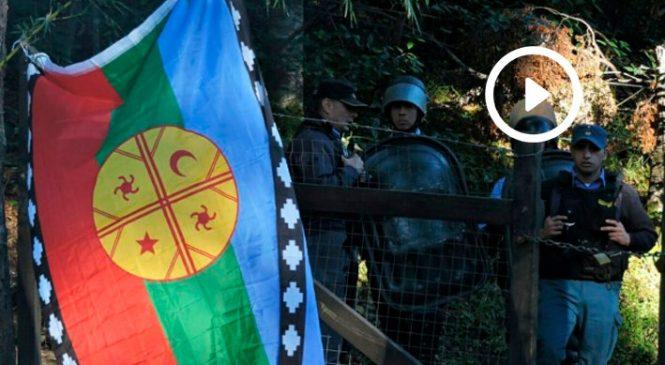 """""""Esto es un delito ambiental que no daña sólo a la comunidad mapuche"""""""