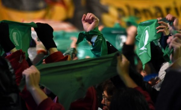 Cita verde en el Congreso: este 28 de mayo la Campaña presentará el nuevo proyecto de ley de IVE