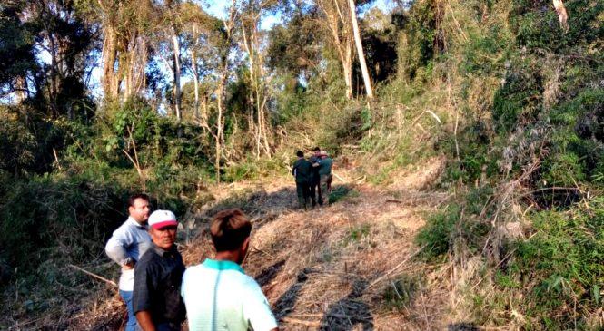 Misiones: se necesitarán 20 años para recuperar el monte arrasado en Arroyo 9