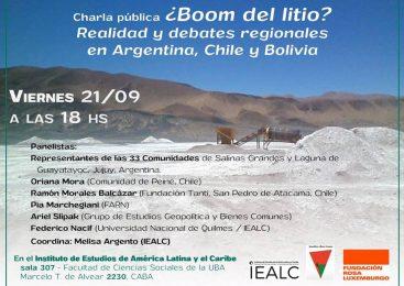 ¿Boom del litio? Realidad y debates regionales en Argentina, Bolivia y Chile