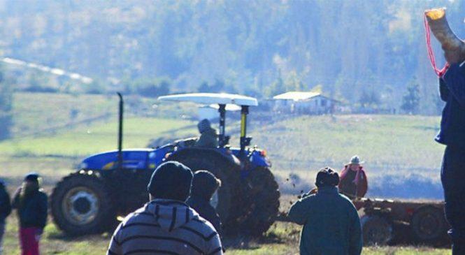 Histórico: justicia chilena ordena al Grupo Angelini a devolver terrenos a comunidad mapuche