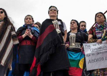 33 Encuentro Nacional de Mujeres: a partir del 34 será Plurinacional