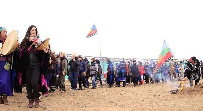 Neuquén: otro revés judicial para Quiroga por nuestras tierras en la Meseta