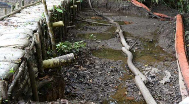 Colombia: Corte ordena consultar a los awá para proyecto petrolero del Putumayo