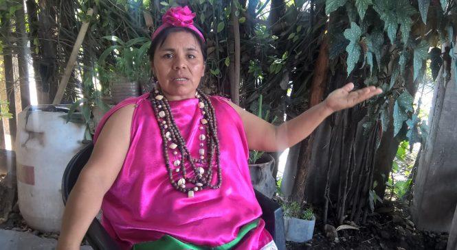 El proceso de lucha por la identidad y la cultura guaraní en Mbaporenda