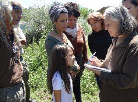 Recuperar la flora nativa: el próximo paso en Punta Querandí