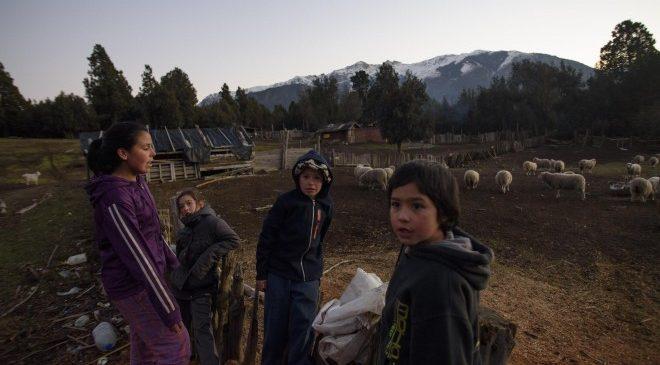 Se declaró la nulidad de una sentencia que había ordenado otorgar a una comunidad mapuche la propiedad de tierras