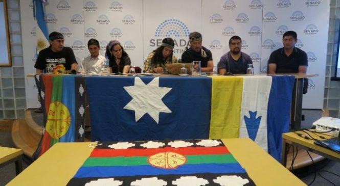 El pueblo mapuche llevó su voz al Senado de la Nación