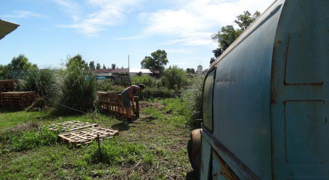 Trabajos del último domingo de 2018 en Punta Querandí
