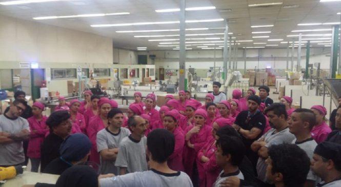 TSU Cosméticos cierra su planta: 150 puestos en riesgo