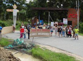 """Cuarta manifestación en el norte de Tigre: """"Salvemos los últimos humedales continentales"""""""