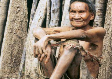 Paraguay: Roban invento de ayoreos, le ponen nombre en inglés y venden carísimo
