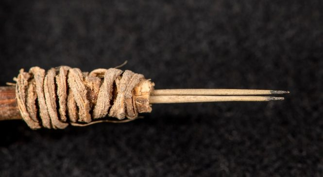 EEUU: Descubierta una herramienta de tatuaje de hace 2.000 años en Utah