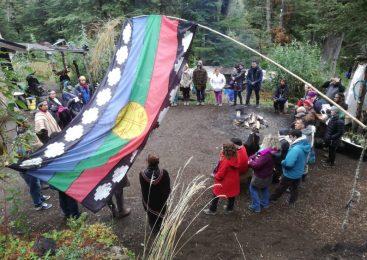 Paichil Antriao celebró un año de resguardo territorial y defensa del bosque nativo