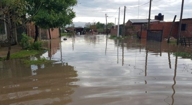 La deforestación es una de las principales causas de las inundaciones que afectan a Chaco