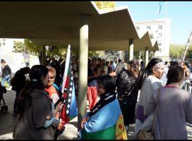 Comunidades del Pueblo Huarpe se movilizaron exigiendo el cumplimiento de la Ley 6920