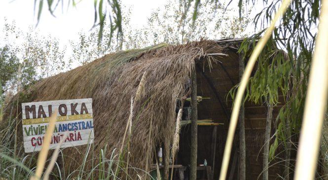 La Maloka: un objetivo cerca de concretarse