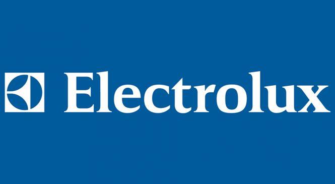 Declaración de solidaridad con los despedidos de Electrolux