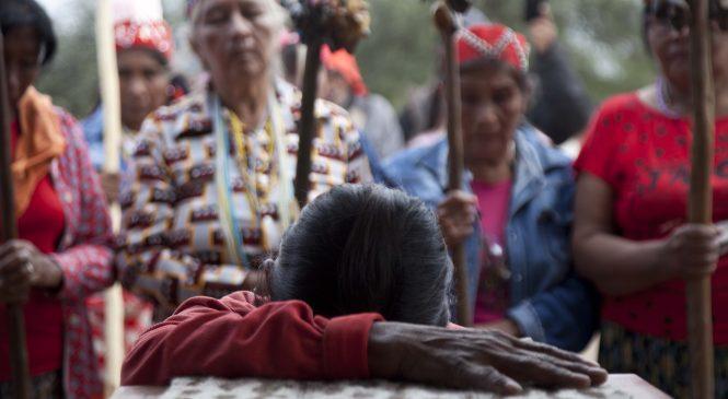 El Museo de La Plata restituyó los restos de una niña nivaclé a su pueblo en Formosa