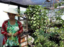 En Santa Fe se prepara un Foro Provincial por un modelo agrario y popular