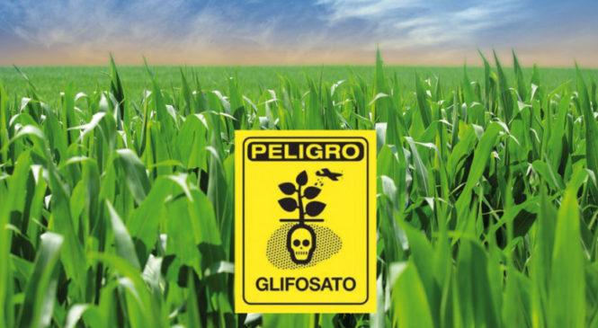 En Argentina se utilizan más de 100 plaguicidas prohibidos