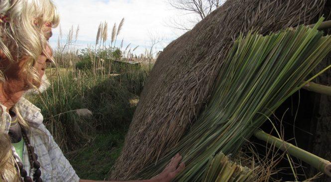 Punta Querandí: domingo de elecciones y trabajo en la Maloka