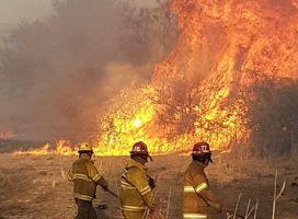 Córdoba: tras los incendios queda el desastre ambiental y las responsabilidades