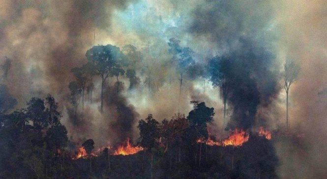 El incendio de la derecha latinoamericana