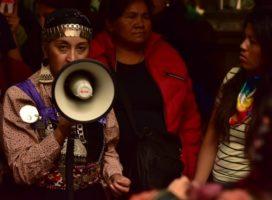 """""""Lo que sucedió hoy en Casa Rosada fue un desprecio hacia toda la comunidad indígena"""""""