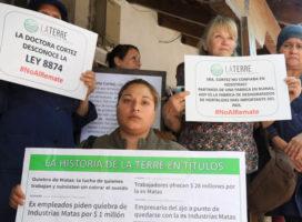 Mendoza: Cooperativa La Terre enfrenta el remate de su planta productiva