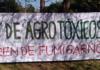Buenas Prácticas Agrícolas (BPA): O como maquillar un genocidio
