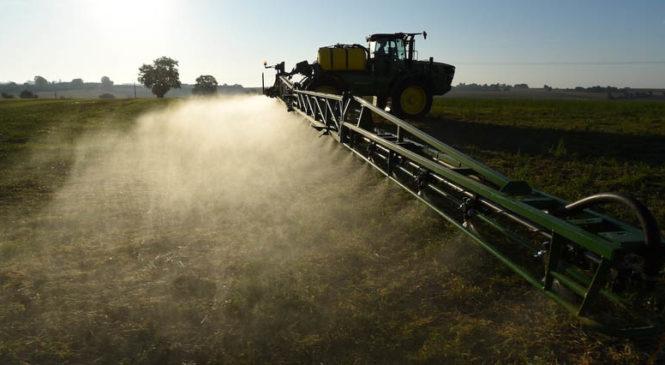Clorpirifós, el pesticida del que nadie habla y es peor que el glifosato