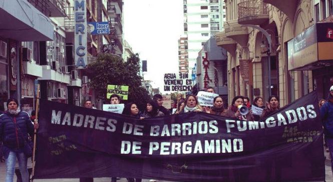 """""""Esta lucha sienta un precedente en la sanción de delitos ambientales"""""""