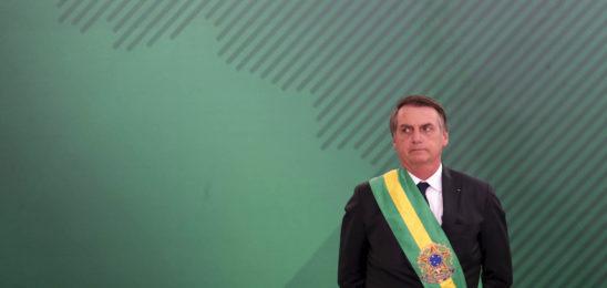 Brasil: record de deforestación en la Amazonia