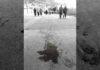 Bolivia: Invisibilizar también es violencia
