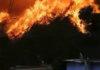 Incendios en Valparaíso: ¡No más plantaciones forestales en Chile!