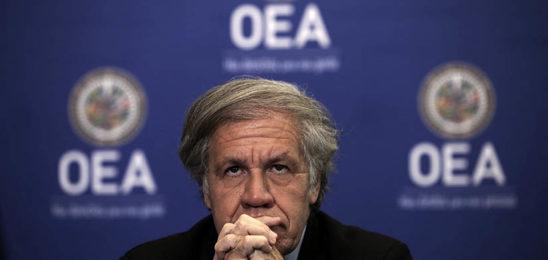 OEA golpista pide apoyo para derrocar al gobierno nicaragüense