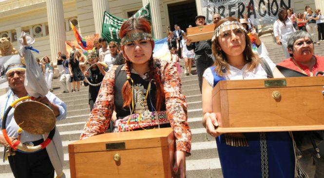 El Museo de La Plata recibió el pedido de restitución de los restos de un hombre guaraní a su pueblo