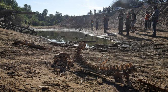 Una crecida del río Pilcomayo agravará la crisis en la zona donde murieron tres niños