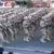 El gobierno de facto de Jeanine Añez militariza nuevamente Bolivia