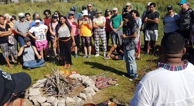 San Juan: actividad en el Ciénago de Zonda por el Día de los Humedales