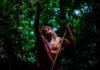 Naturaleza y pueblos indígenas en tiempos de Coronavirus