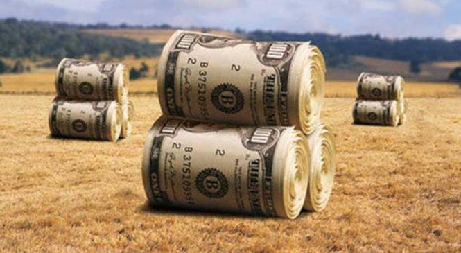 Sojeros: ¿Cuánto ganan? ¿Cuánto trabajan? ¿Cuántos son?