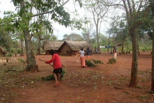 """Hermano mbya-guaraní: """"No somos dueños, sino parte de la naturaleza"""""""