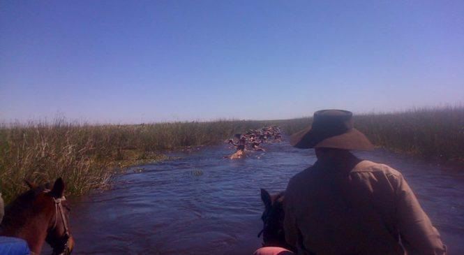 Corrientes: en plena cuarentena otra vez cierran camino a Jahavere