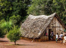 Misiones: preocupación por el estado de vulnerabilidad de comunidades guaraníes ante el coronavirus
