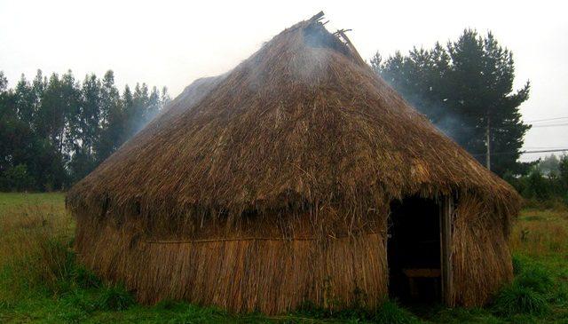 Chile: El urgente llamado desde la vida rural en la Araucanía ante la emergencia sanitaria