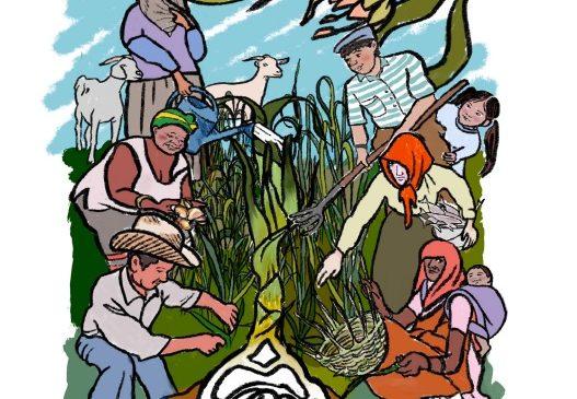 Derechos Campesinos – Libro Didáctico: ¡ Una nueva versión ilustrada de la Declaración de la ONU